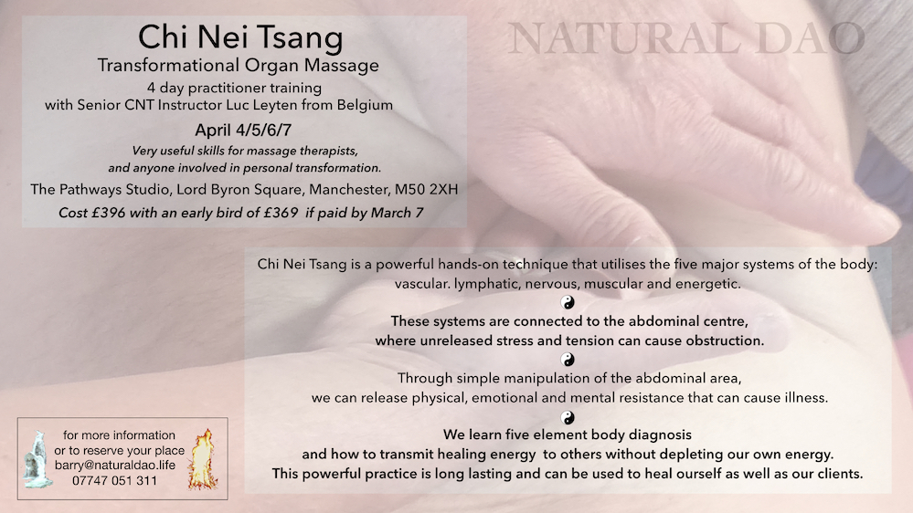 chi nei tsang practitioner training